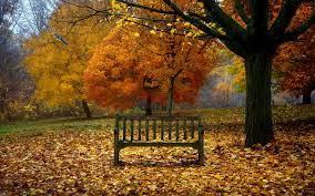 Fall Scenes For Desktop Background ...