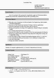 Copies Of Resumes Inspirational Design Free Professional Resume