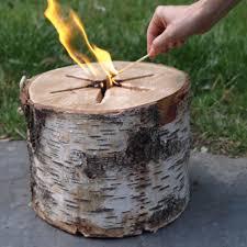 Image result for Portable Campfire log