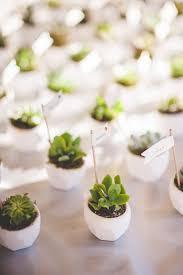 Marvelous Succulent Wedding Favors Intended For Best 25 Ideas On Pinterest