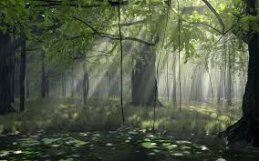 hd wallpapers nature forest. Contemporary Nature Original Resolution On Hd Wallpapers Nature Forest P