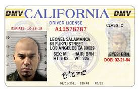 Ignore - World Dmv Identity Illegals News Ca Bureau Theft By Ordered To