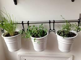 Kitchen Window Herb Garden Garden Design Garden Design With Apartment Gardening Ideas Diy