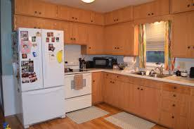 restain honey oak cabinets rixen dsc cabinet pulls white drawer handles exterior door hardware cupboard pull