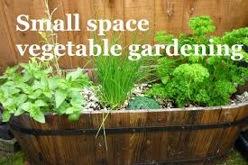 small space vegetable gardening a