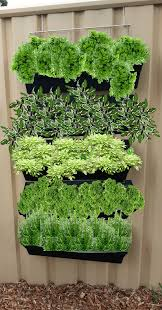 Vertical Garden Colorbond Fence