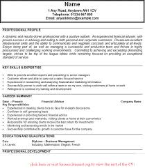 Career Advisor Resume Adorable Financial Adviser CV Example In CV Examples Page 48 Of 48