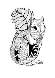 Flying Squirrel Coloring Page Uticureinfo
