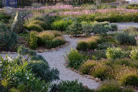 Small Picture Garden Design Garden Design with Mediterranean garden on