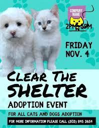 Pet Information Template Pets Adoption Event Flyer Template Pet