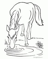 Small Picture Free Horse Outline Coloring Coloring Pages