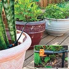 Small Picture Drip irrigation for squash The Garden Pinterest Drip