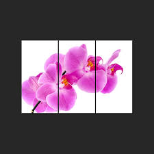 triptych wall art canvas prints pink orchid promo  on orchid canvas wall art with triptych wall art canvas prints pink orchid promo home photo