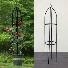 metal garden obelisk climbing plant