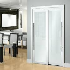 Frosted Glass Pocket Door Veranda Inch White Framed Frosted Sliding ...