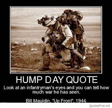 Funny Hump Day Quotes Interesting Best Funny Hump Day Pictures Saying Cards Cartoons 48 QuotesNew