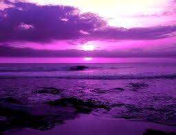 color inspiration purple beautiful the purple and the sky purple sunset