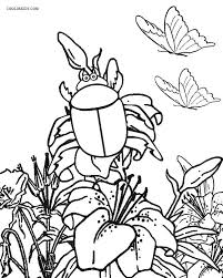 Small Picture Printable Bug Coloring Pages For Kids Cool2bKids