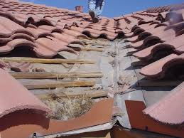 full size of metal spanish tile roof preventing common mistakes pie consulting engineering example