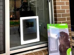 extra large dog door for glass and screens single double glazing