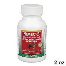 Nemex 2 Amphibians Food Puppies Dogs Puppies Dog Bowls