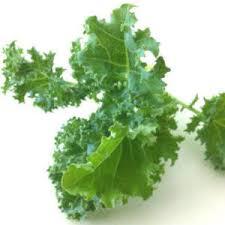 Moringa Comparison Chart Moringa Vs Kale Nutritional Comparison