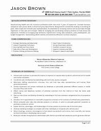 Sales And Marketing Resume Templates Advertising Sales Representative Resume Samples Lovely Advertising 6