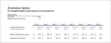Amortization Options Intangible Assets Income Approach Ds B