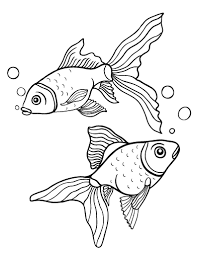 Small Picture Free Goldfish Coloring Page