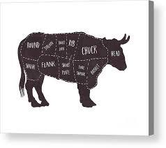 Beef Cuts Chart Primitive Butcher Shop Beef Cuts Chart T Shirt Acrylic Print