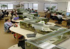 office fish tank. Office Fish Tanks Arvind Tank O
