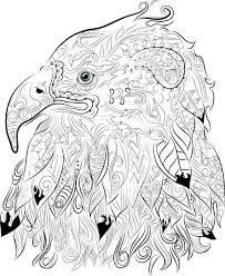 Bald Eagle Coloring Page Pictures Head Parkereneindhovenairportinfo