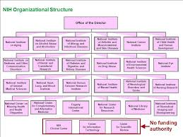 Nih Organizational Chart National Institutes Of Health Nih Ppt Download