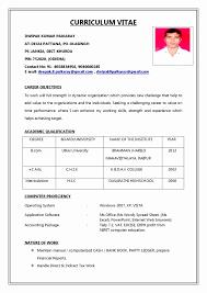 Create Resume Online Free Fresh 53 Best Sample Professional Resume