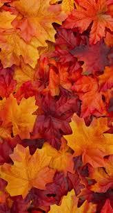 26++ Autumn Leaves Aesthetic Wallpaper ...