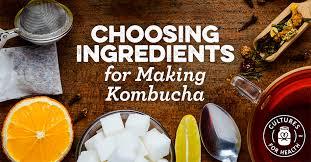kombucha ings choosing tea