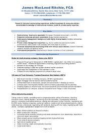 Private Equity Resume Pdf Eliolera Com