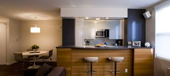 Modern Kitchen Cabinets Nyc Modest Design Kitchen Cabinets NYC Gorgeous Modern Kitchen Cabinets Nyc