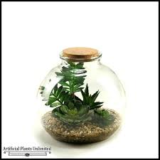 glass bowl with plants inside artificial plant terrarium containers unlimited terrariums large for