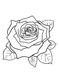 Why not let it inspire your kid too? Coloring Page Rose Free Printable Coloring Pages Img 29751
