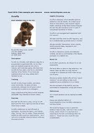rent pets pet resume the travel pet sitter dog walker rent pets pet resume