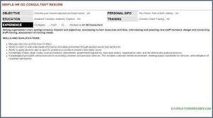 Organizational Chart Template Free Download Excel Easytemplate Ga