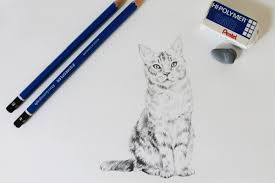realistic cat drawing in pencil. Perfect Pencil Get A Simple Tutorial For How To Draw Realistic Cat For Realistic Cat Drawing In Pencil I