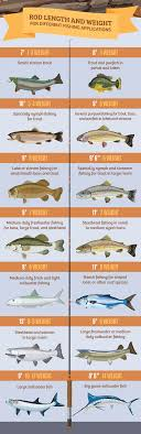 Fly Rod Weight Chart Fly Fishing With The Right Rod And Reel Partselect Com