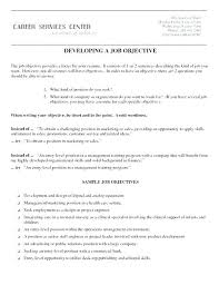 Opening Sales Statement Example Objective For Manager Resume