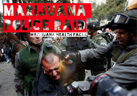 Image result for police marijuana