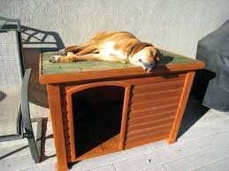 build your own dog house build a dog house build insulated dog house plans