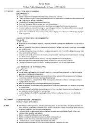 Housekeeping Resume Director Housekeeping Resume Samples Velvet Jobs 45