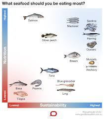 Australian Reef Fish Species Chart Heres The Seafood Australians Eat And What We Should Be