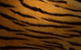 mac tiger wallpaper. Contemporary Mac Mac Os X Tiger Wallpaper 21779 Wallpapers  Hdesktopict With A